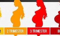Pregnancy Presentation Concept