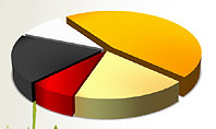 Presentation with Pie Chart and Table (data driven)