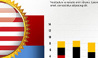 USA Quality Infographic Concept