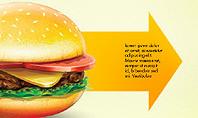 Hamburger Infographics