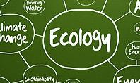 Ecology Mind Maps