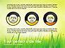 Green Grass Report slide 10