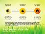 Green Grass Report slide 13