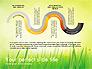 Green Grass Report slide 9