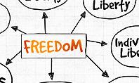 Freedom Organizational Chart