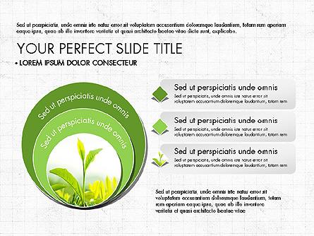 Maintenance of ecological balance ppt