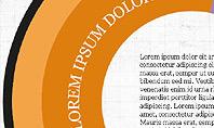 Donut Infographics Concept