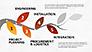 Tree Branch Stage Diagram slide 5