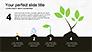 Tree Grow Presentation Template slide 5