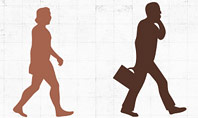 Evolution Diagram with Infographics for Presentations