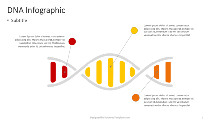 DNA Infographic Presentation Template, Master Slide