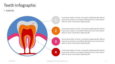 Teeth Infographic Presentation Template, Master Slide