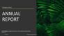 Nonprofit Organization Annual Report slide 1