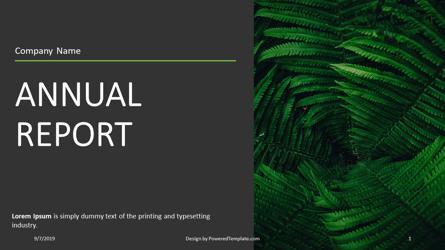 Nonprofit Organization Annual Report Presentation Template, Master Slide