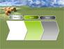 Dog Breeding Free slide 16