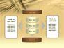 3D Sepia Business slide 13