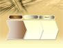 3D Sepia Business slide 16