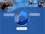Sea Tourism slide 9