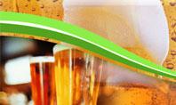 Beer Bottles Presentation Template