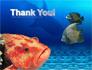 Fish In Aquarium slide 20