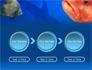Fish In Aquarium slide 5