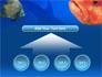 Fish In Aquarium slide 8