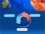 Fish In Aquarium slide 9