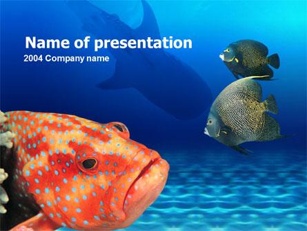 Fish In Aquarium Presentation Template, Master Slide