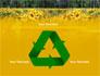 Alpine Flowering Meadows slide 10