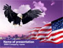 American Eagle slide 1