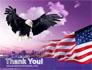 American Eagle slide 20