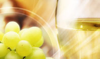 White Wine Presentation Template