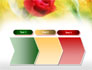 Red Roses slide 16