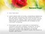 Red Roses slide 2
