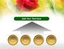 Red Roses slide 8