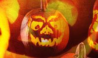 Halloween Decoration Presentation Template