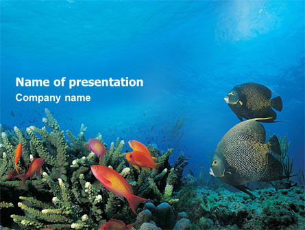 coral reef presentation template for powerpoint and keynote ppt star