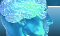 Brain Activity Presentation Template