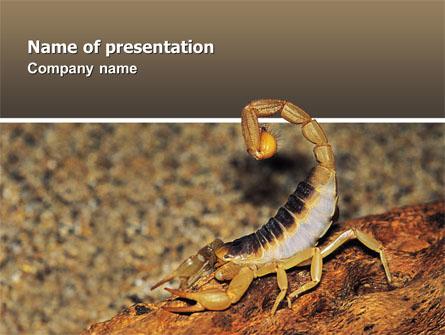 Desert hairy scorpion presentation template for powerpoint and desert hairy scorpion presentation template master slide toneelgroepblik Choice Image