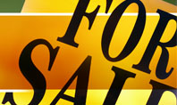 Real Estate Sale Presentation Template
