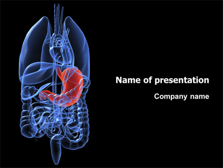 Stomach Presentation Template For Powerpoint And Keynote