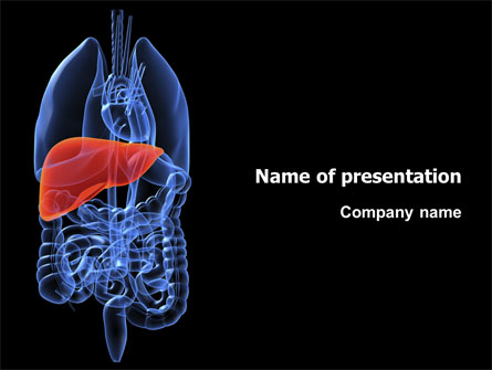 Liver Presentation Template for PowerPoint and Keynote | PPT Star