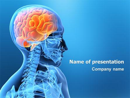 Brain in skull presentation template for powerpoint and keynote brain in skull presentation template master slide toneelgroepblik Choice Image