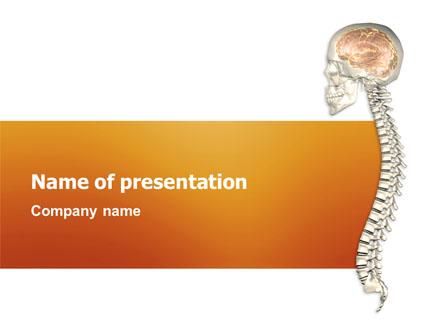 Cord Presentation