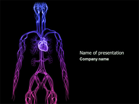 Cardiovascular System Presentation Template For Powerpoint And