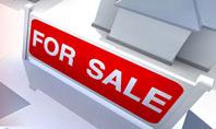 Real Estate In Massive Sale Presentation Template