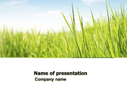 green grass under blue sky presentation template master slide