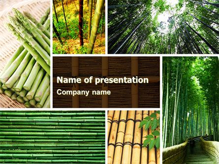 Bamboo Trees Presentation Template For Powerpoint And