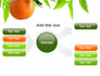 Orange Tree Presentation Template for PowerPoint and ...