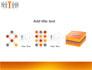 Orange Winner slide 9